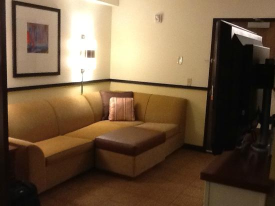 Hyatt Place Salt Lake City - Downtown: Pull out sofa