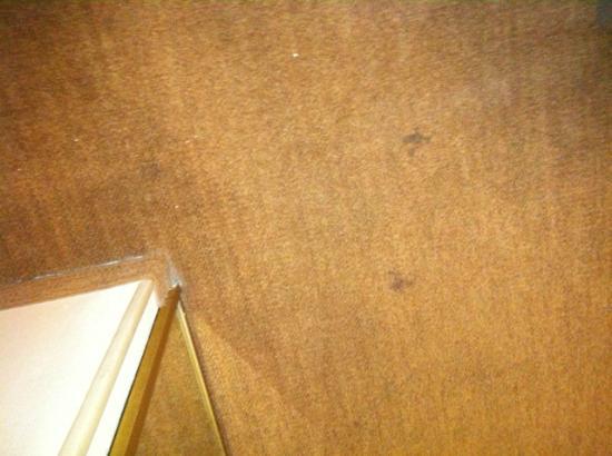 Hampton Inn Memphis-Walnut Grove/Baptist Hospital East: Stained Carpet in room