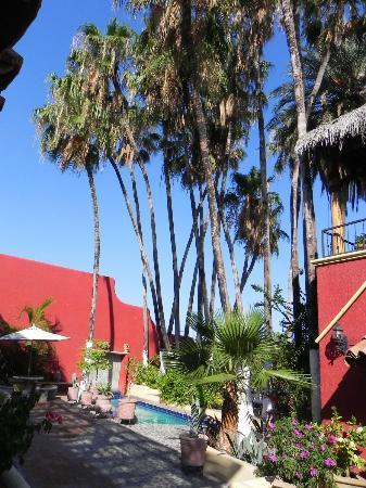 Bilde fra Posada de las Flores La Paz