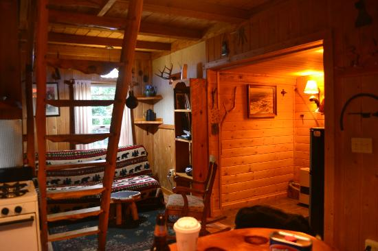 Josselyn's Getaway Log Cabins: The Living Area