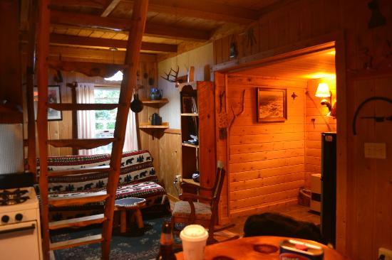 Josselyn's Getaway Log Cabins 사진