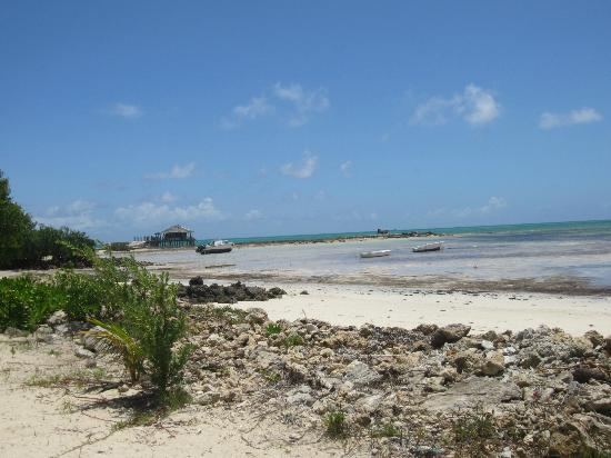 Small Hope Bay Lodge: View of the beach