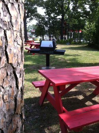 Land O Nod Inn: picnic area located close to the rooms