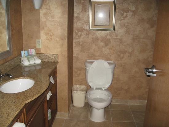 Holiday Inn Express & Suites Little Rock-West: bathroom