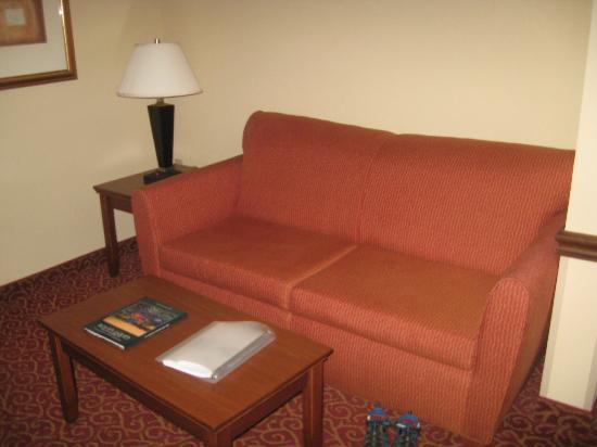 Holiday Inn Express & Suites Little Rock-West: sofa