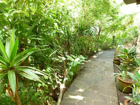 Kaalpul Atitlan Eco Hotel & Spa: Groomed Trails in the Nature Reserve