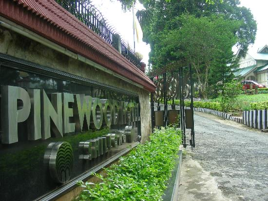 Pinewood Hotel: Enterance