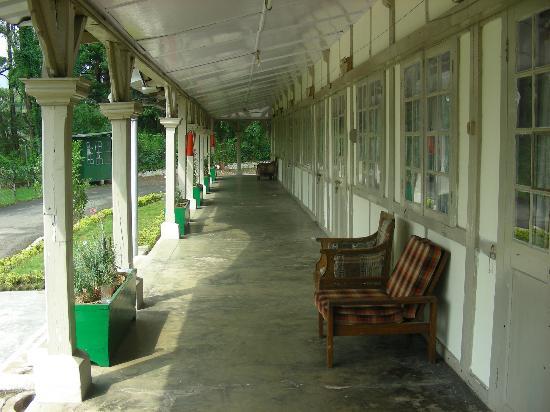 Pinewood Hotel: corridors