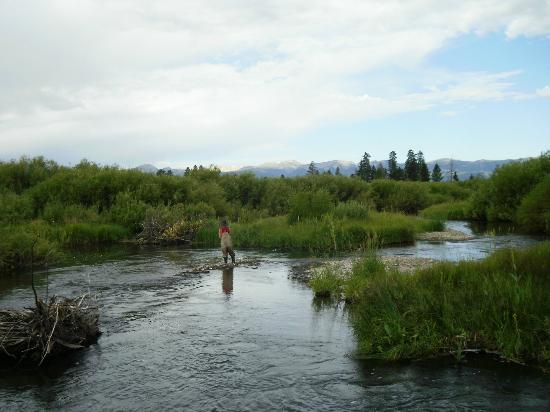 Fly Fishing at Parade Rest Ranch