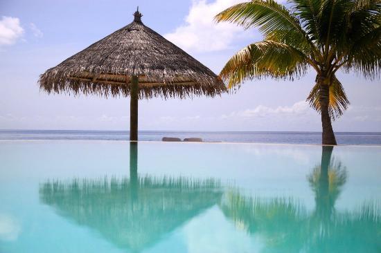 منتجع Cocoa Island by COMO: Pool and sea 