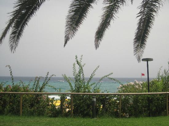 The Free Beach Club : Plage depuis la piscine