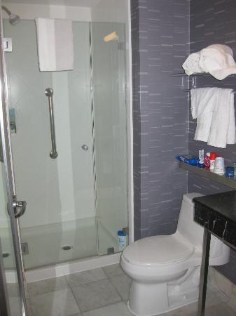 Hampton Inn Manhattan - Madison Square Garden Area: Baño