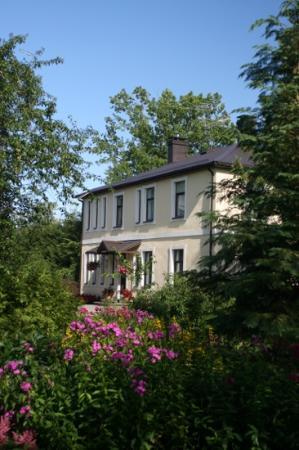 Livonija: hotel Livonja, beautiful garden