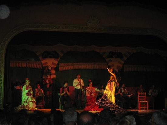 El Palacio Andaluz: Bailaora fenomenal.