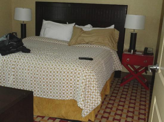 Embassy Suites by Hilton Columbus - Airport: The king bed.
