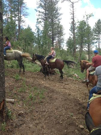 Grindstone Stables : Headed up the trail