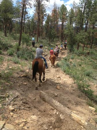 Grindstone Stables: Despite the rough terrain, the horses were very easy to ride