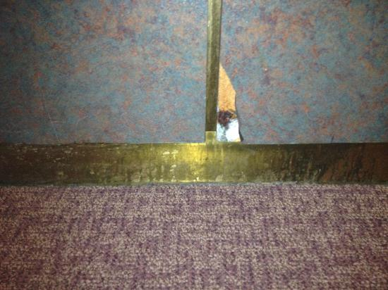 La Quinta Inn & Suites Denver Englewood Tech Ctr: What the heck is this in the elevator?  Gross.