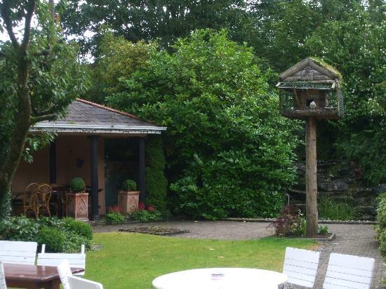 Jackson's Hotel: The garden