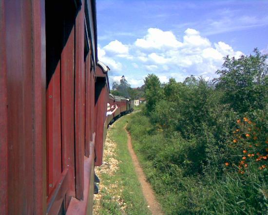 Steam train to Sao Joao del Rei : Vista da janela com o trem em movimento