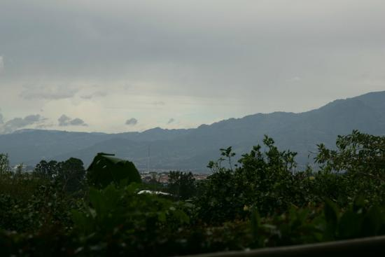 Finca Rosa Blanca Coffee Plantation & Inn: View from the restaurant deck