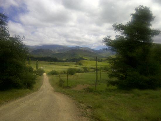 Bushmans Nek Berg & Trout Resort: The road to the border post, a nice walk