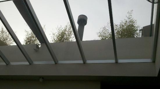 El Capullo: el techo de vidrio del comedor