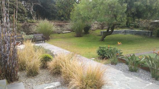 El Capullo: más jardin