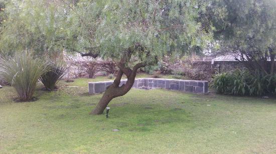Posada El Capullo: El jardín