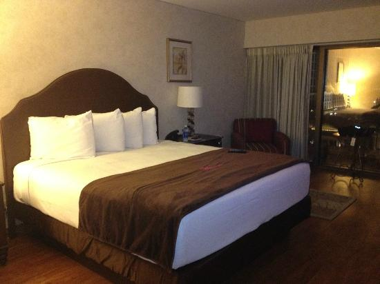 Flamingo Las Vegas Go Room Upgrade