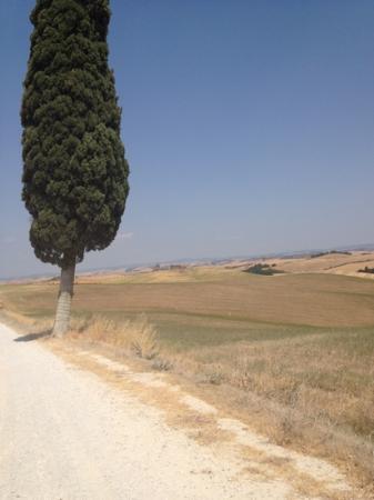 Villa Corsanello: Nearly there!