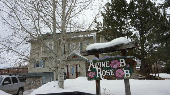 Alpine Rose Bed and Breakfast: Alpine rose