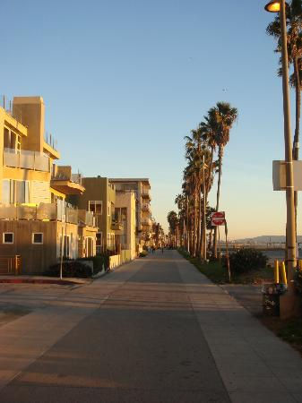 Inn at Venice Beach: beautiful houses