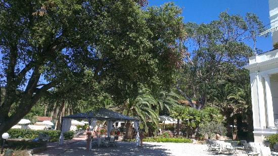 Hotel Villa Ottone : Parc