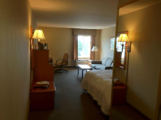 Hampton Inn Twin Falls Idaho: View as you walk in to the room