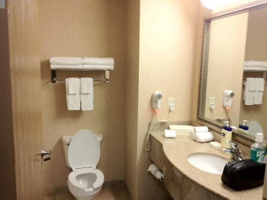Hampton Inn Twin Falls Idaho: Bathroom