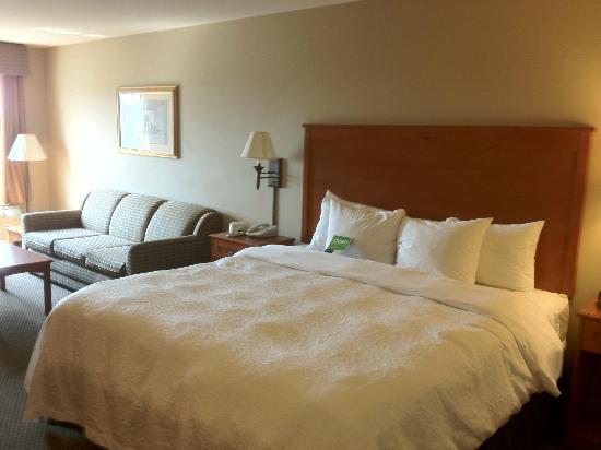 Hampton Inn Twin Falls Idaho: King Bed and Sleeper Sofa