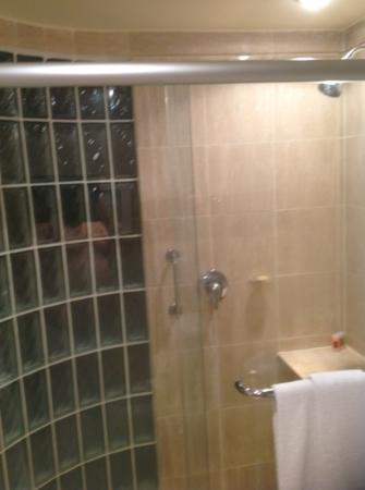 Pullman Sao Paulo Ibirapuera: shower