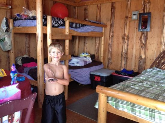 Dunromin Waterfront Campsite & Cabins 사진