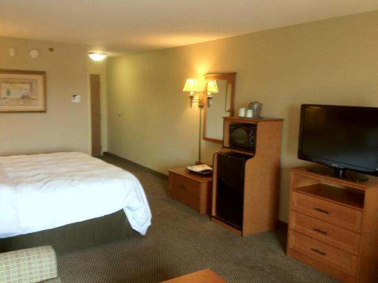 Hampton Inn Twin Falls Idaho: Room 347