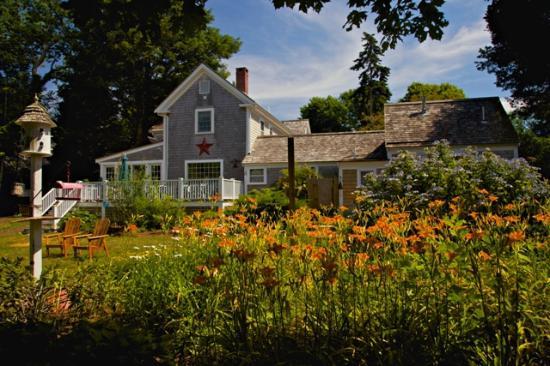 Sea Meadow Inn at Isaiah Clark House: Backyard View