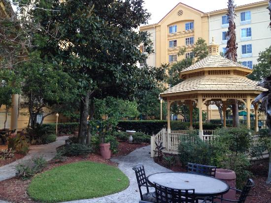 La Quinta Inn & Suites Orlando Convention Center: Garden
