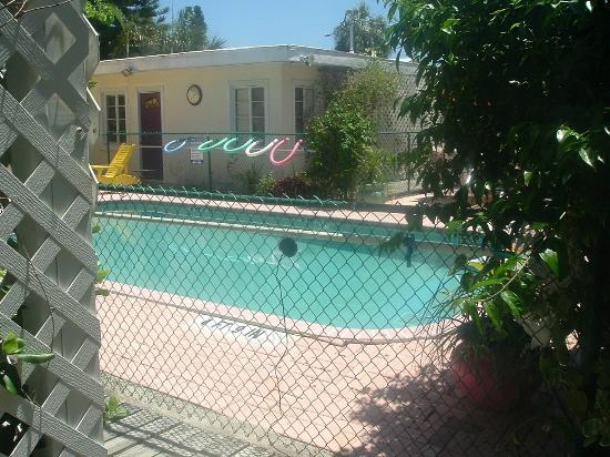 Haleys Motel and Resort: The Very Nice Pool!!!!