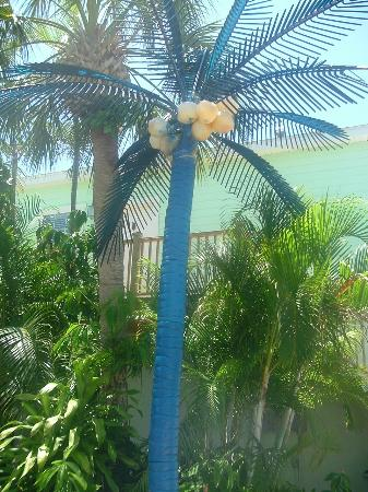 Haleys Motel and Resort: A painted plastic palm tree, thought it was cute!!!!