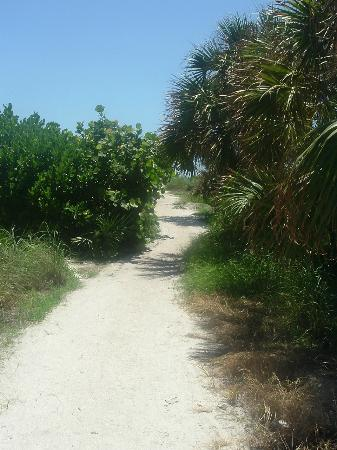 Haleys Motel and Resort: The path to the beach!!!!