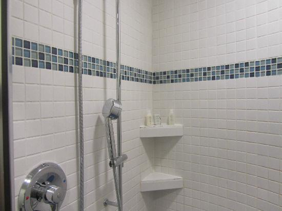 Hotel Gibbs: 704 corner shower
