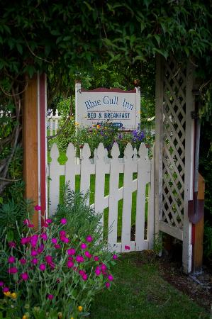 Blue Gull Inn Bed & Breakfast: entrance to the garden
