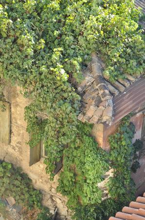 Ξενοδοχείο Φαίδρα: View from roof