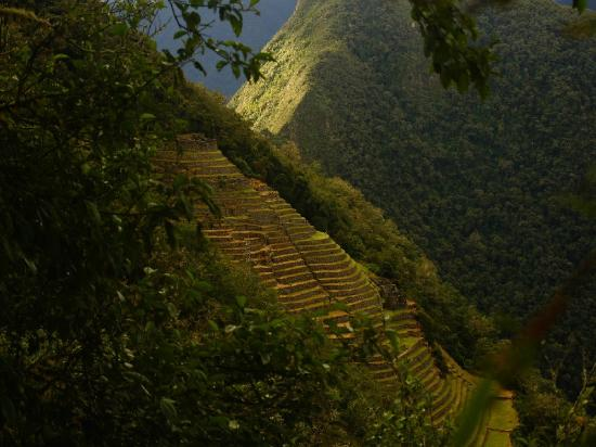 The Ruins of Intipata: Intipata: view from a distance.
