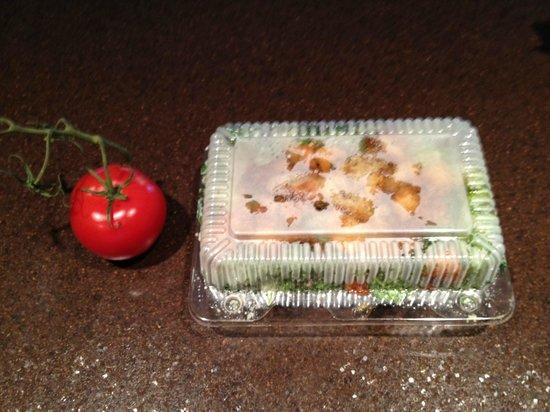 Nikos Restaurant : Tiny Little Salad for $14